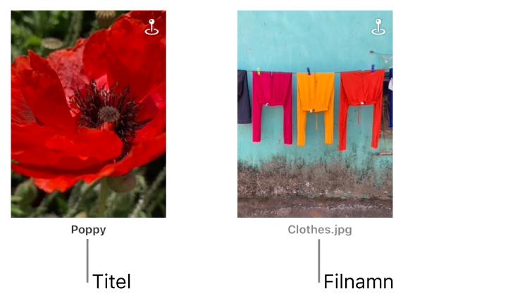 Två bilder, en med en titel nedanför och en annan med ett filnamn nedanför.