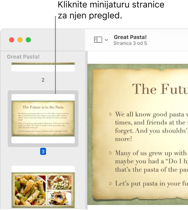 PDF s minijaturama prikazanim u rubnom stupcu.