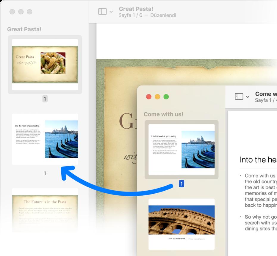 Bir PDF'ten başka bir PDF'in kenar çubuğuna sürüklenen sayfa küçük resmi.