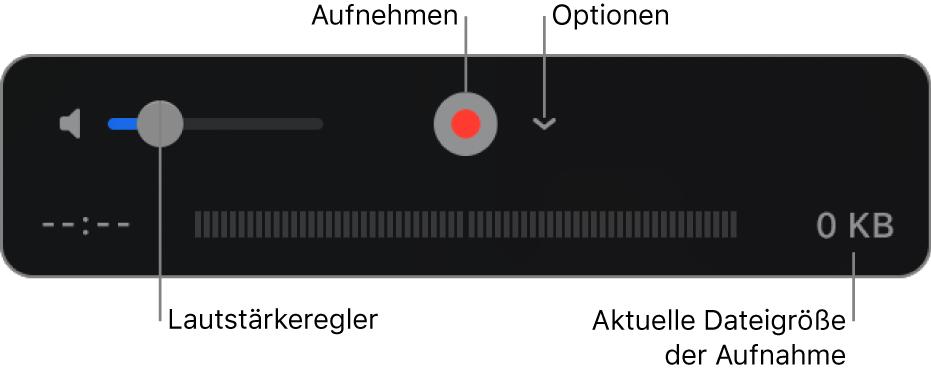 """Aufnahmensteuerungen einschließlich Lautstärkeregler, Aufnahmetaste und Einblendmenü """"Optionen"""""""