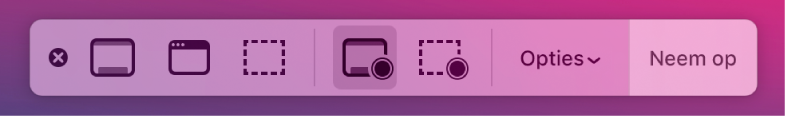 Schermopnamehulpmiddelen met rechts de knop 'Neem op' en daarnaast het venstermenu 'Opties'.