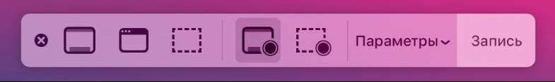 Инструменты Снимка экрана. Справа находится кнопка записи, рядом сней— всплывающее меню «Параметры».