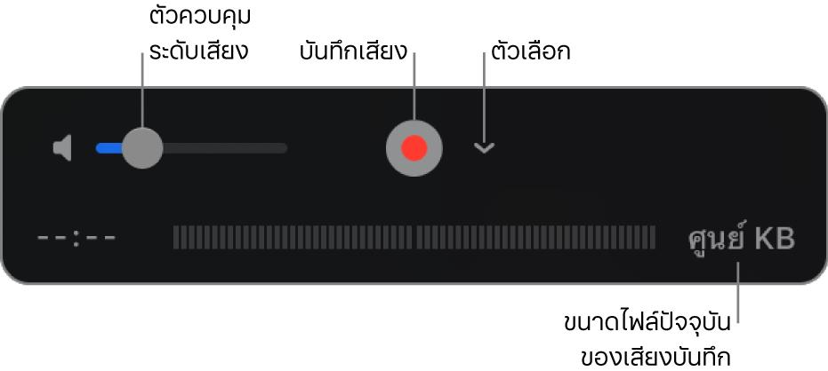 ตัวควบคุมการบันทึก ซึ่งได้แก่ ตัวควบคุมระดับเสียง ปุ่มบันทึก และเมนูตัวเลือกที่แสดงขึ้น