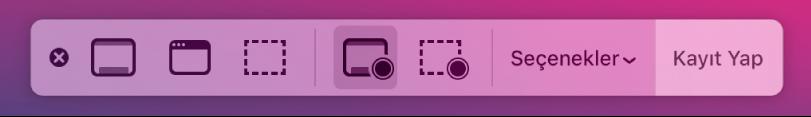 Sağda Kayıt Yap düğmesi ile ekran resmi araçları ve yanında Seçenekler açılır menüsü.
