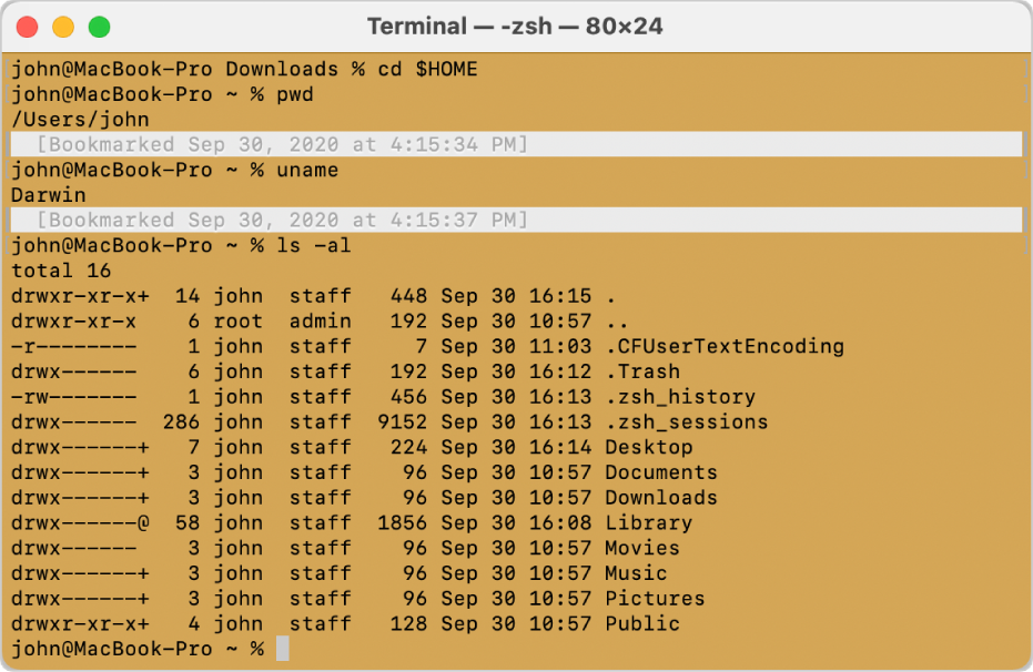 A Terminal window, showing marks and bookmarks at the left and right sides of the window, and a timestamped bookmark above a command prompt.
