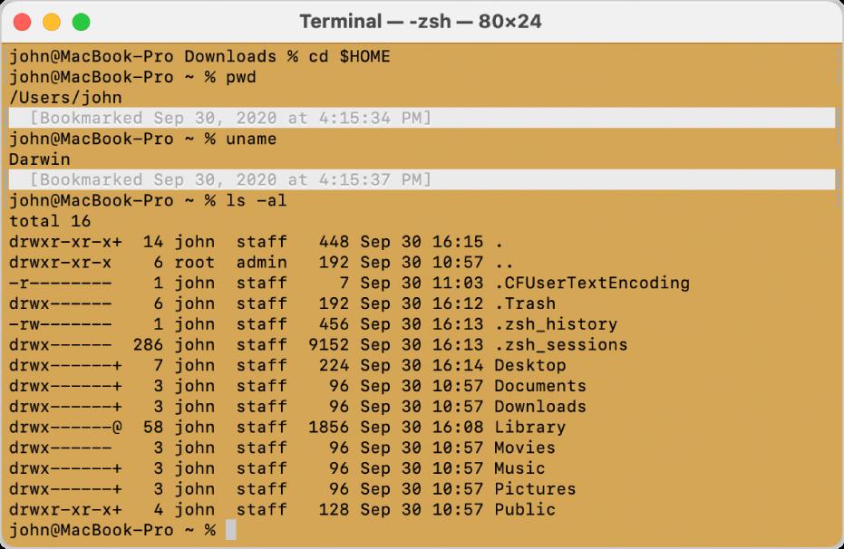 Ventana de Terminal mostrando marcas y marcadores a la izquierda y derecha de la ventana, y un marcador con fecha arriba de una línea de comando.
