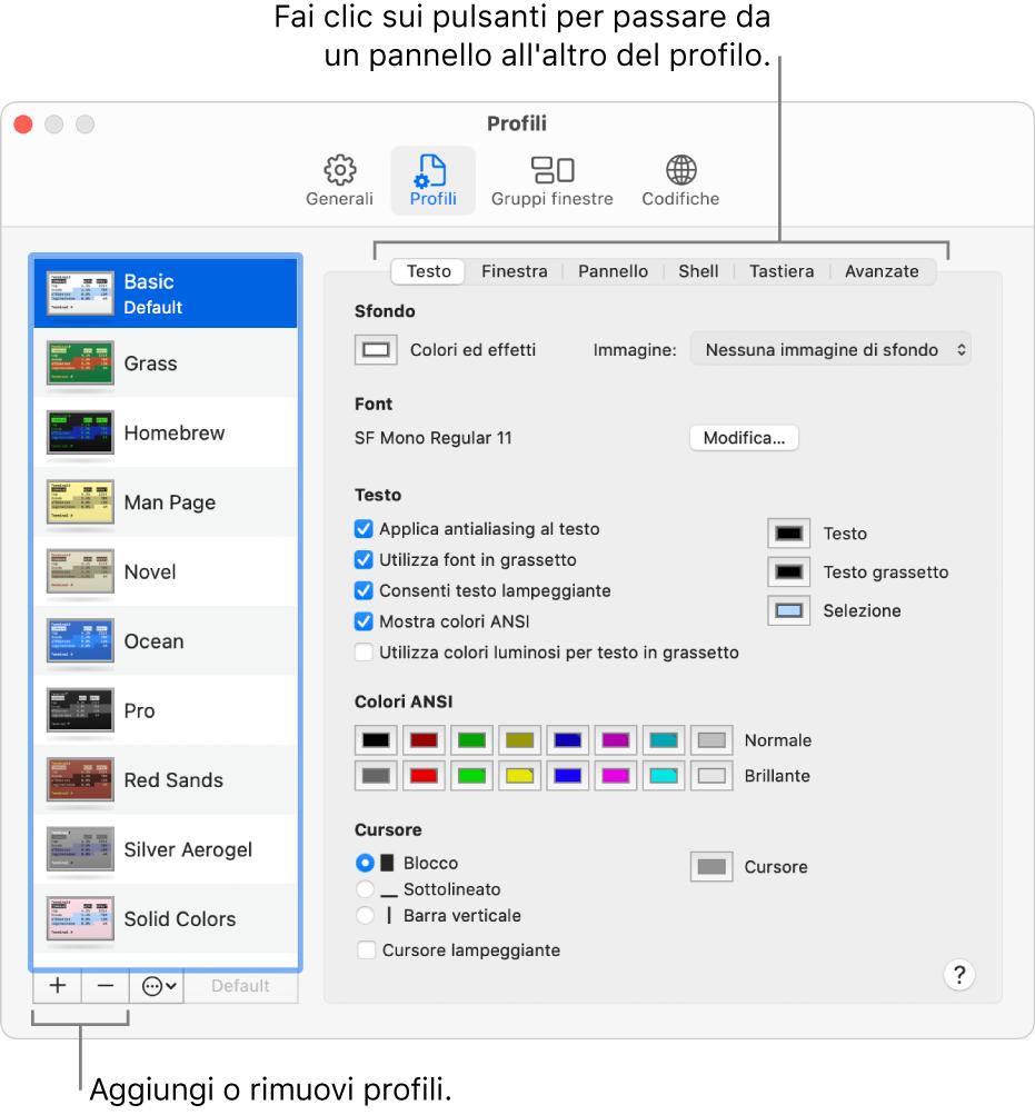 Pannello Profili di Terminale con il profilo di base selezionato. Sono presenti pulsanti per aggiungere e rimuovere profili e pulsanti che consentono di visualizzare uno dopo l'altro i pannelli dei diversi profili.