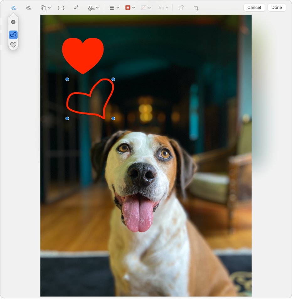 An image with a heart drawn on it using the Markup tools.