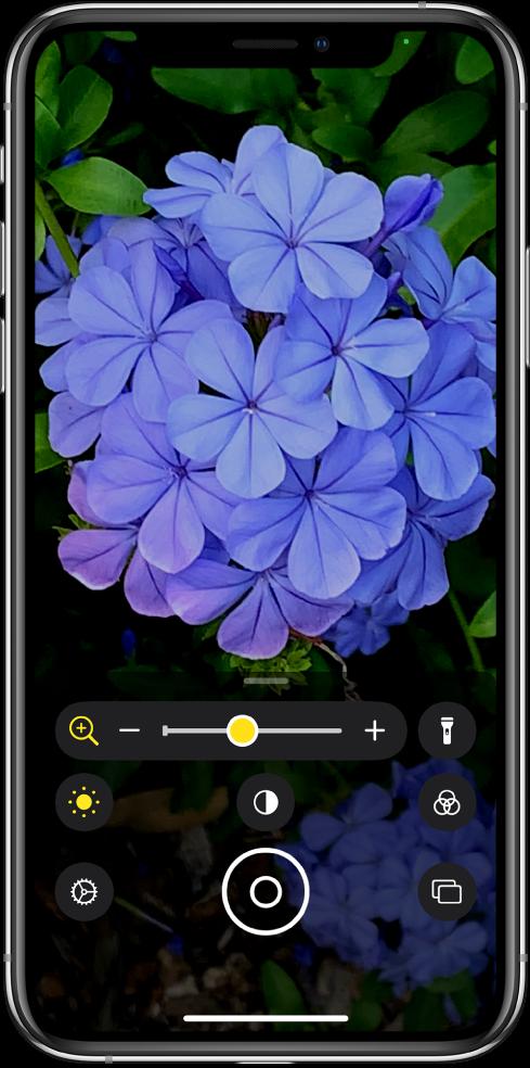 Obrazovka aplikace Lupa se zvětšeným detailem květiny
