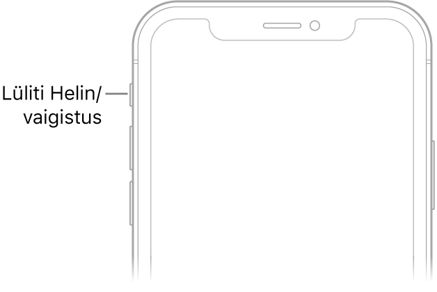 iPhone'i esikülje ülaosa koos väljaviiguga lülitile Helin/vaigistus.