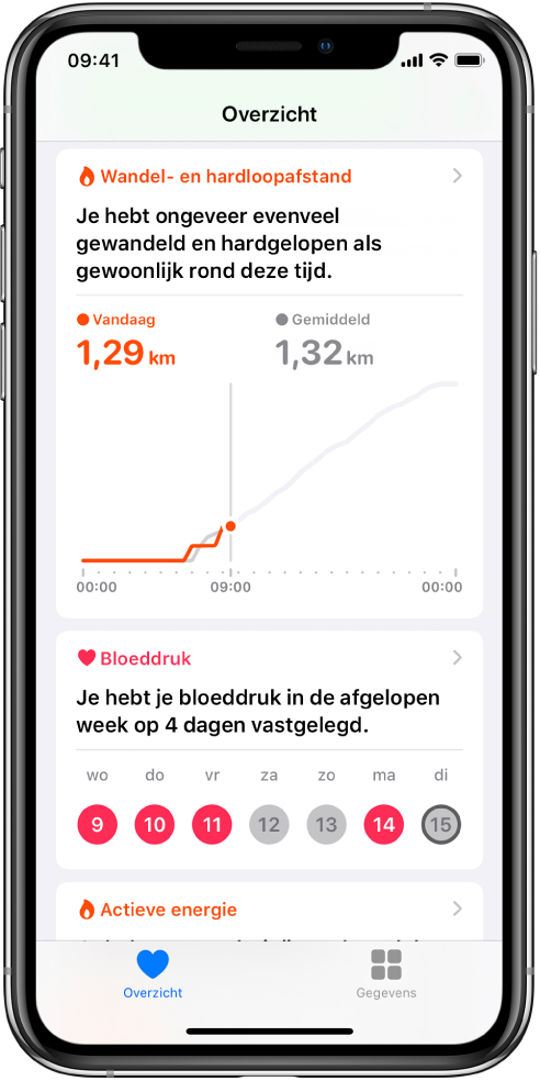 Een Overzicht-scherm met als hoogtepunten de wandel- en hardloopafstand van vandaag en het aantal dagen dat de bloeddruk is gemeten de afgelopen week.