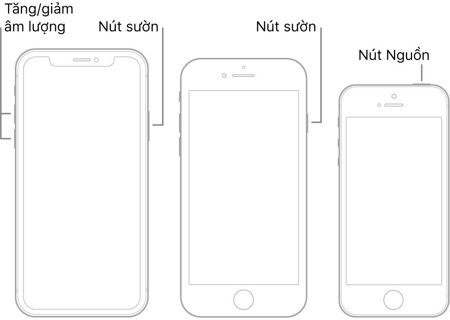 Hình minh họa của ba kiểu máy iPhone khác nhau, tất cả đều có màn hình hướng lên trên. Hình minh họa ở ngoài cùng bên trái hiển thị các nút tăng và giảm âm lượng ở cạnh bên trái của thiết bị. Nút sườn được hiển thị ở bên phải. Hình minh họa ở giữa hiển thị nút sườn nằm ở bên phải của thiết bị. Hình minh họa ở ngoài cùng bên phải hiển thị nút Nguồn ở đầu thiết bị.