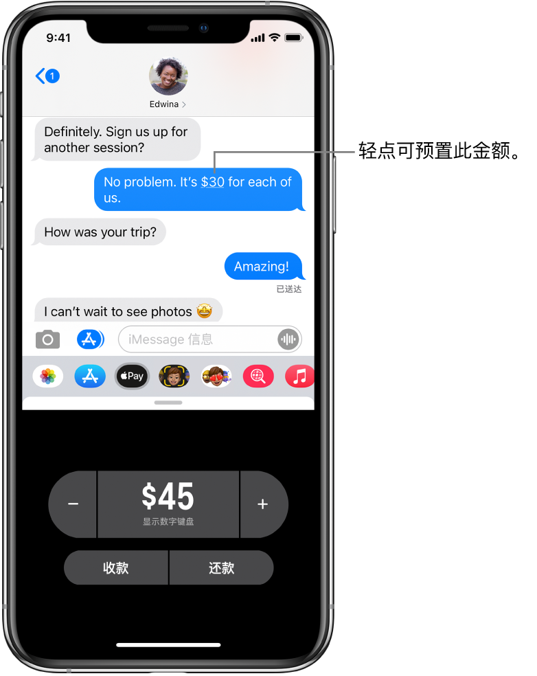 iMessage 对话,底部是打开的 Apple Pay App。