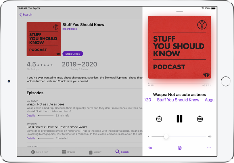 A Podcasts search results page fills the screen. On the right side of the screen, a podcast plays and playback controls appear below the podcast cover image.