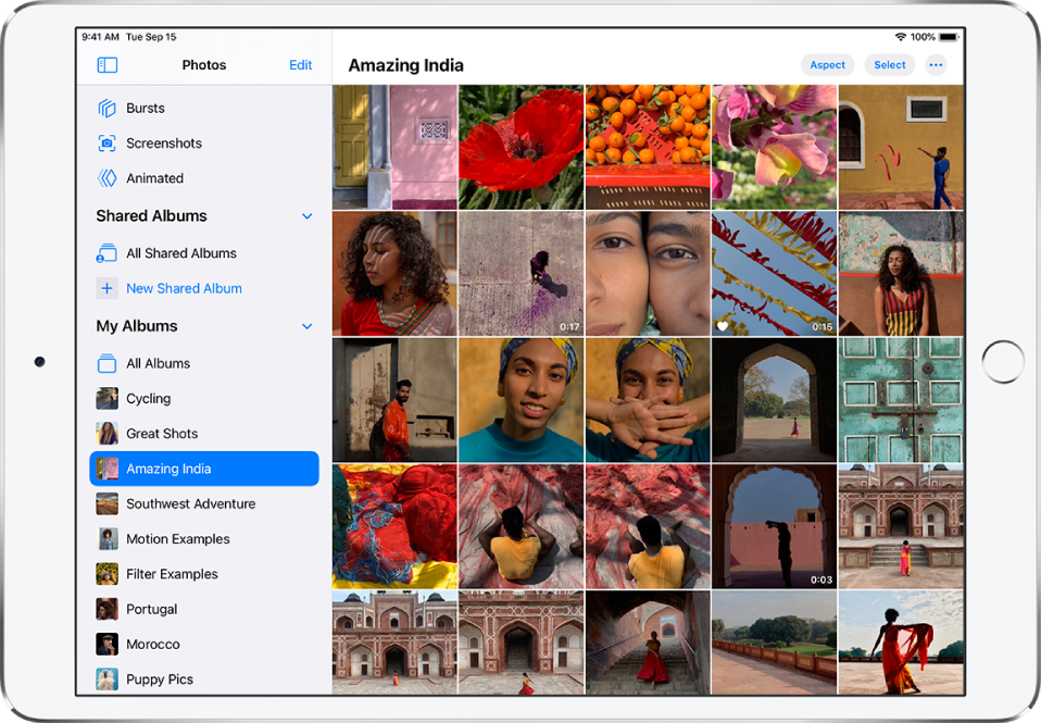 The Photos sidebar is open on the left side of the screen. Under the My Albums heading, the album titled Amazing India is selected. The rest of the iPad screen is filled with photos and videos from the Amazing India album displayed in tiles.