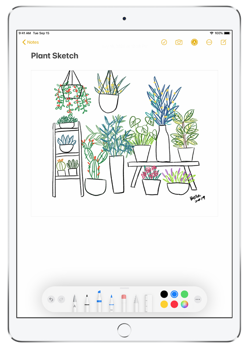 A drawing of plants in a note in the Notes app. Along the bottom of the screen is the Markup toolbar with writing tools and a custom color selected.