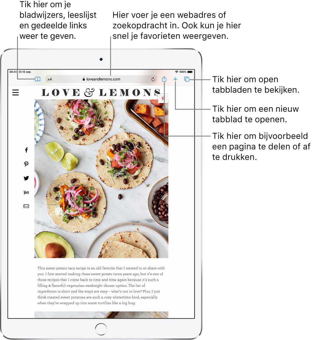 Een geopende website in Safari, met bovenaan van links naar rechts: knoppen voor vorige, volgende, de bladwijzerknop, het adresveld, de knoppen voor delen, nieuw tabblad en het weergeven van pagina's.