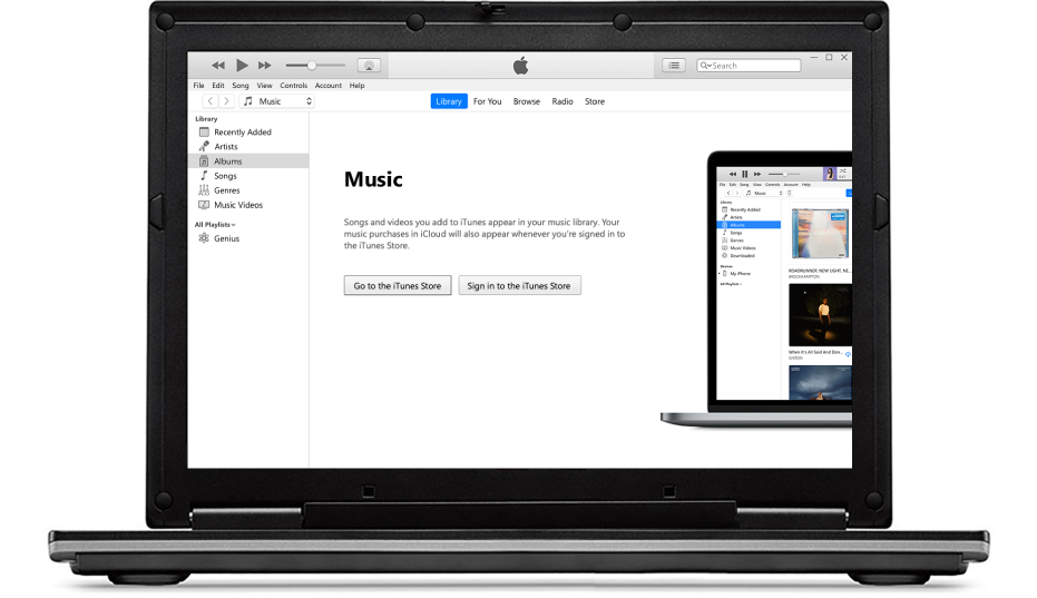A PC with a new, empty iTunes library.