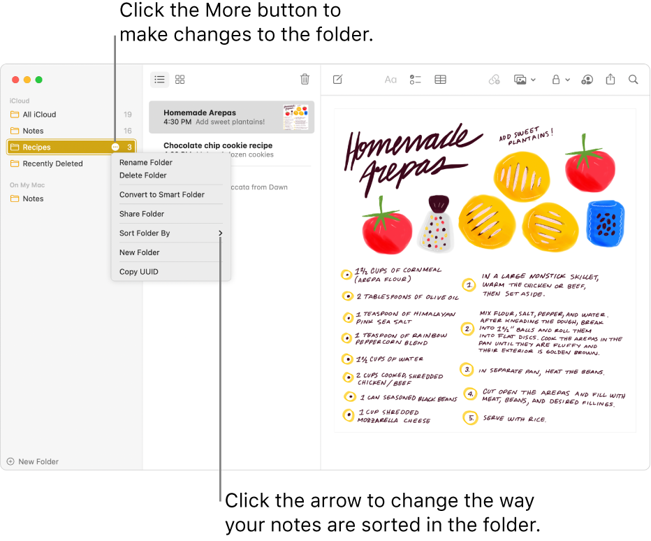The Notes window with one folder in the sidebar showing the More button where you can make changes to a folder. Above the list of notes in the middle is the sort option, which changes the order of the notes—click the arrow to select a different sort order.
