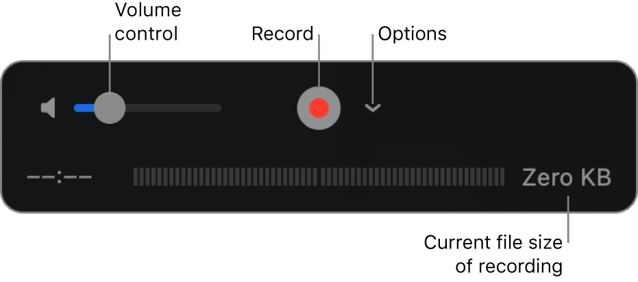 The recording controls, including the volume control, the Record button, and the Options pop-up menu.