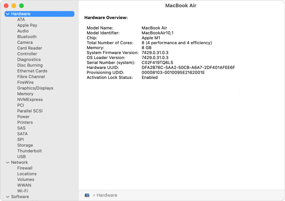 The Hardware Overview section of a system report.