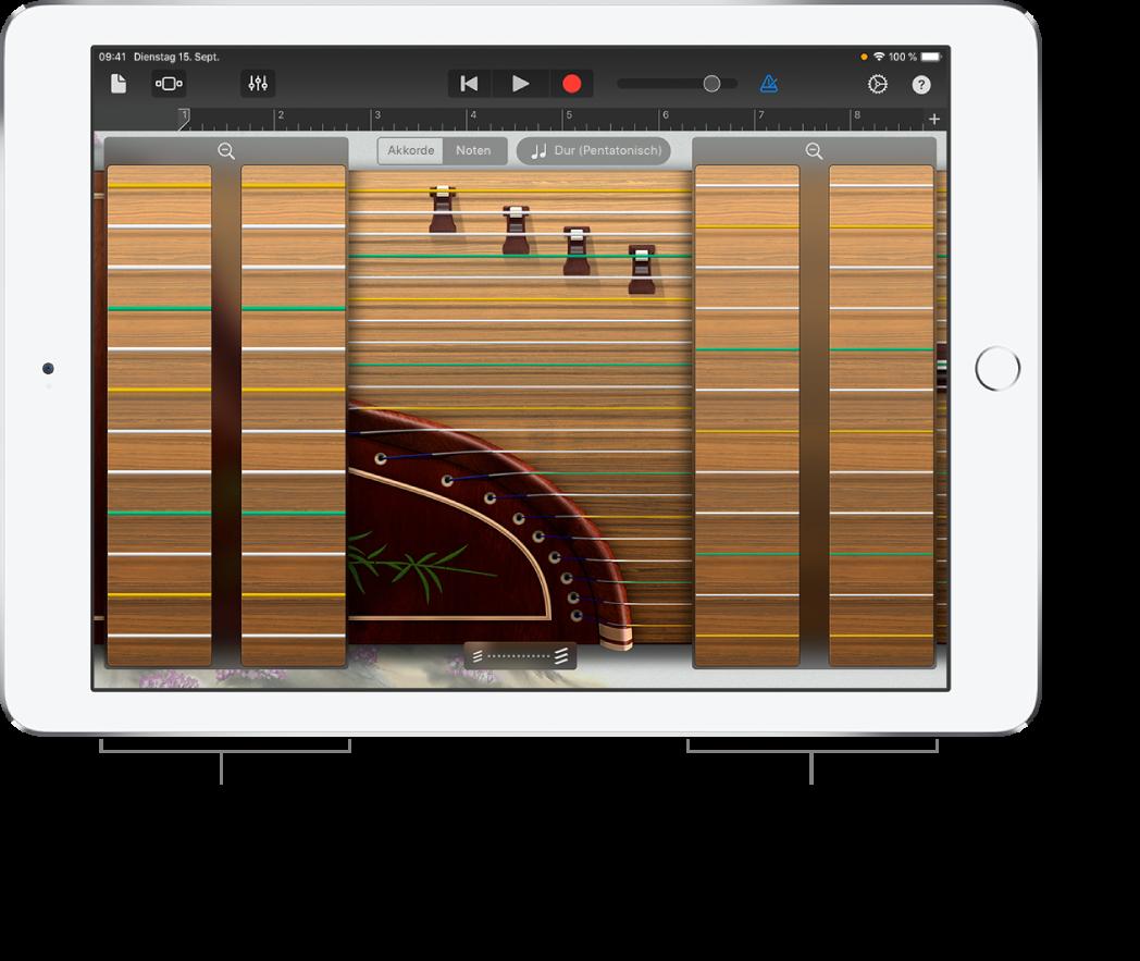 Zoomrahmen für Guzheng
