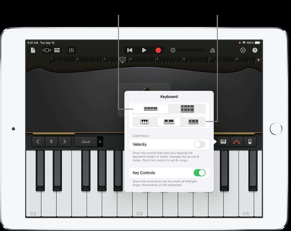 Keyboard layout and size controls