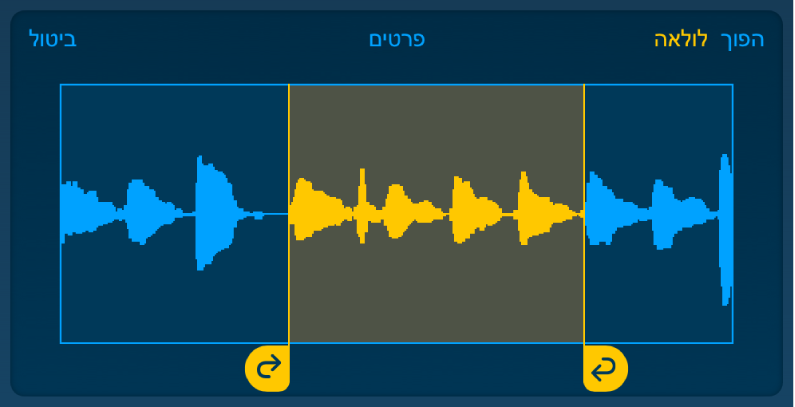 קטע השמע שבין הידית השמאלית לידית הימנית של הלולאה מתנגן בלולאה.