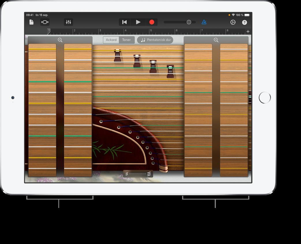 Guzheng-zoomrutor