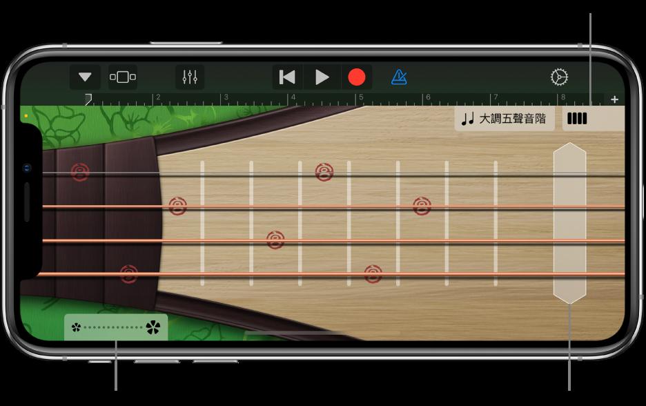 圖表。琵琶,音符顯示方式。