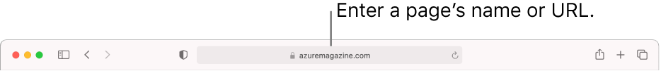 The Safari Smart Search field, where you can enter a page's name or URL.