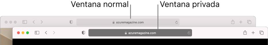 Una ventana de Safari normal con su campo de búsqueda inteligente claro y una ventana de Safari privada con su campo de búsqueda inteligente oscuro.