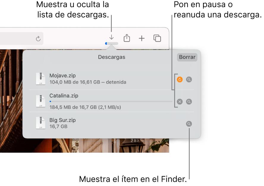 El botón de descargas en la barra de herramientas con la lista de descargas debajo de él.