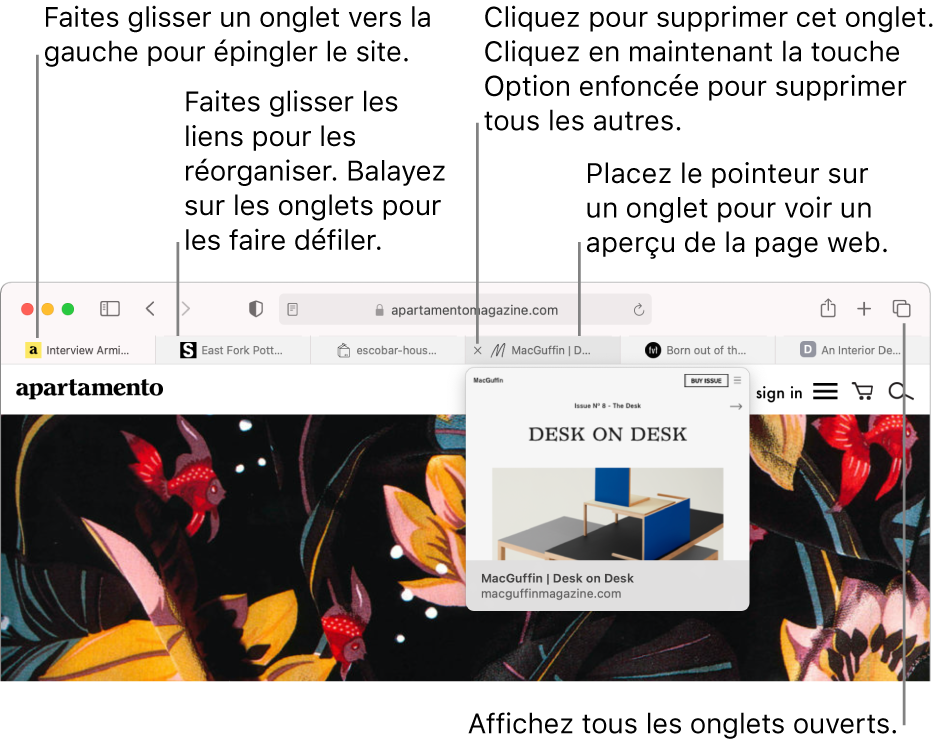 La fenêtre Safari comprenant plusieurs onglets ouverts, avec le pointeur placé sur un onglet présentant un aperçu de la pageweb.