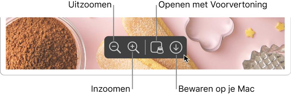 Het onderste gedeelte van een Safari-venster met daarin een pdf en regelaars om in en uit te zoomen, een voorvertoning van de pdf te openen en de pdf op de Mac te bewaren.
