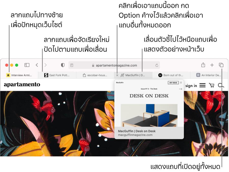 หน้าต่าง Safari ที่มีหลายแถบเปิดอยู่ โดยมีตัวชี้อยู่เหนือแถบแถบหนึ่งที่แสดงการแสดงตัวอย่างของหน้าเว็บ
