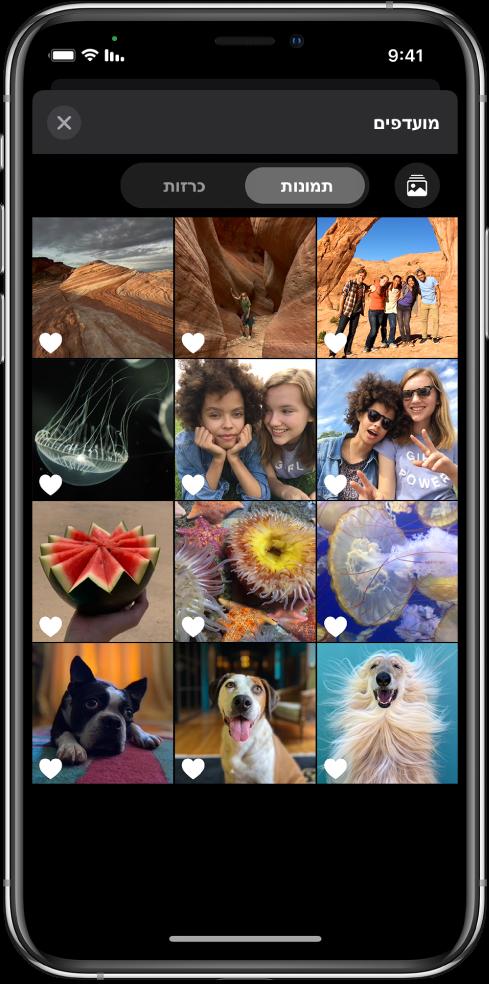 דפדפן התמונות שמראה תמונות ממוזערות של תמונות.