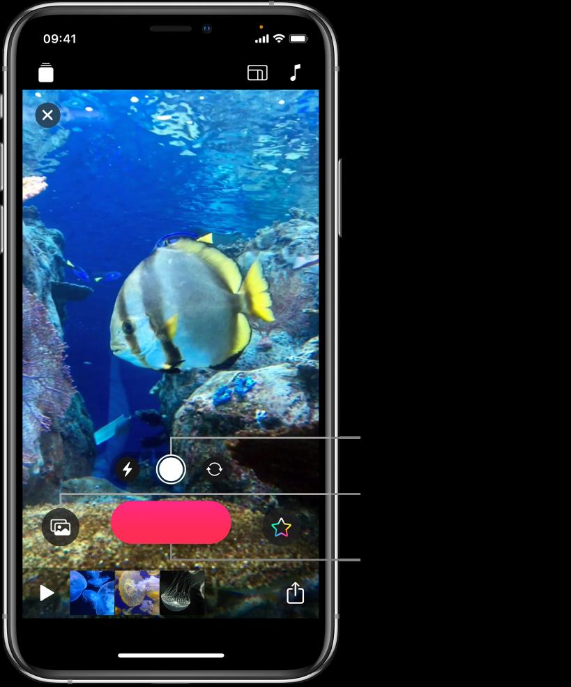 Slika videozapisa u pregledniku, s kontrolama kamere, tipkom Snimi i minijaturama isječaka u trenutačnom projektu ispod.