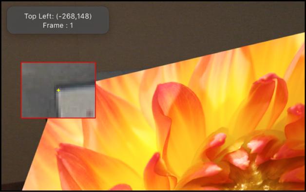Canvas mit vergrößertem Inset, das eingeblendet wird, wenn ein Tracker bewegt wird