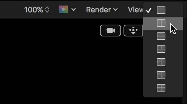 Viewport options in the canvas