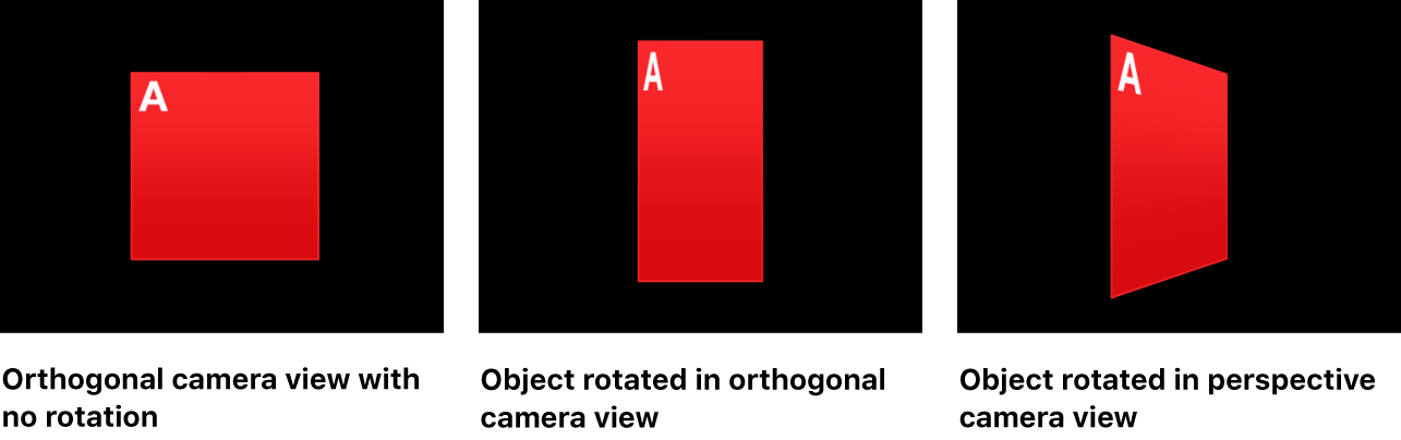 Canvas showing object with no rotation, rotated in orthogonal camera view, and in perspective camera view