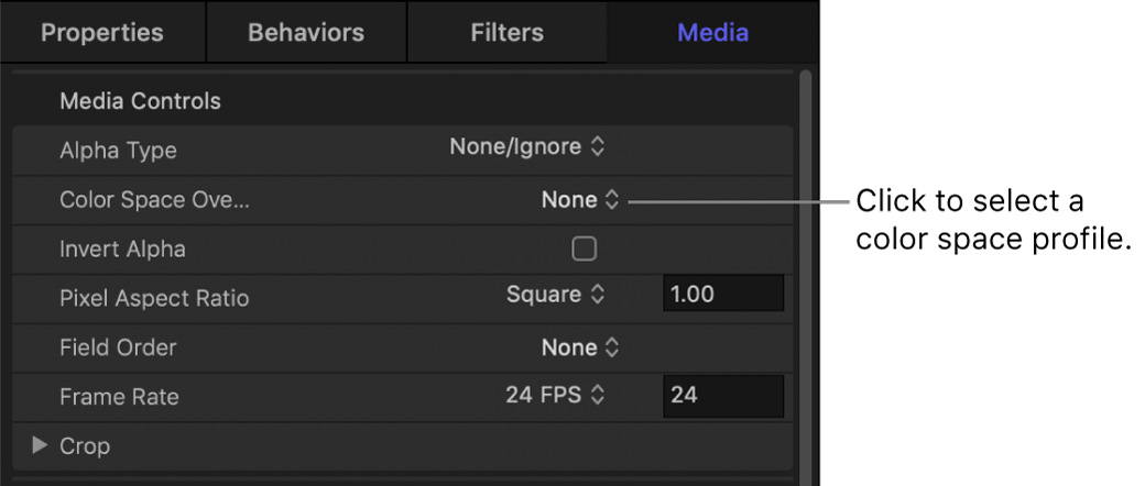 Media Inspector showing Color Space Override parameter