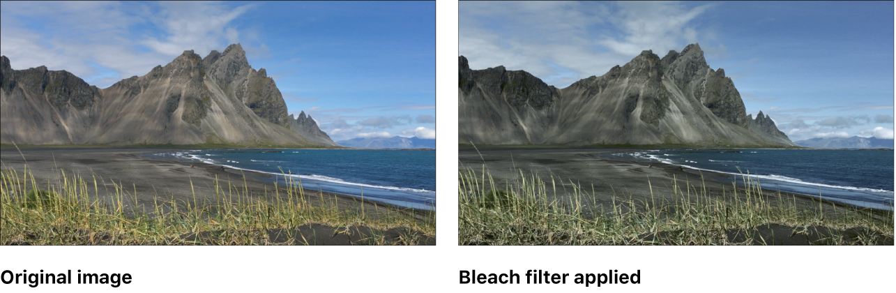 Canvas showing effect of Bleach filter