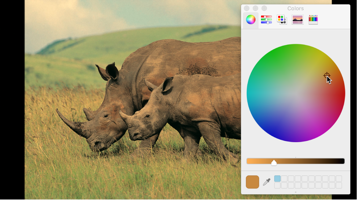 Using Colors window to rebalance color of an image