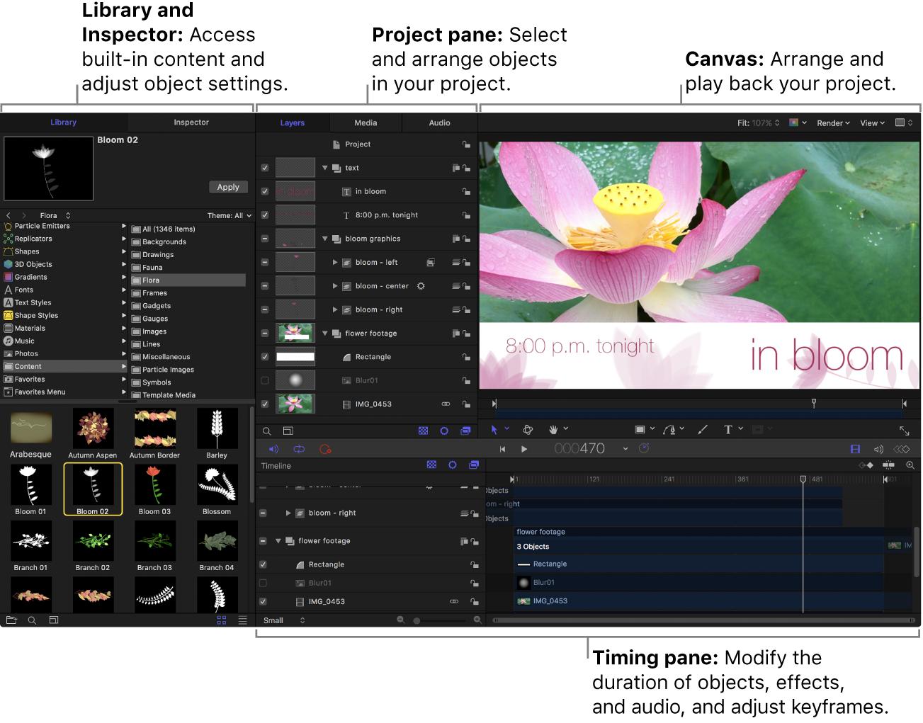 Ventana de Motion con la biblioteca, el panel Proyecto, el lienzo, el panel Temporización y la barra de herramientas