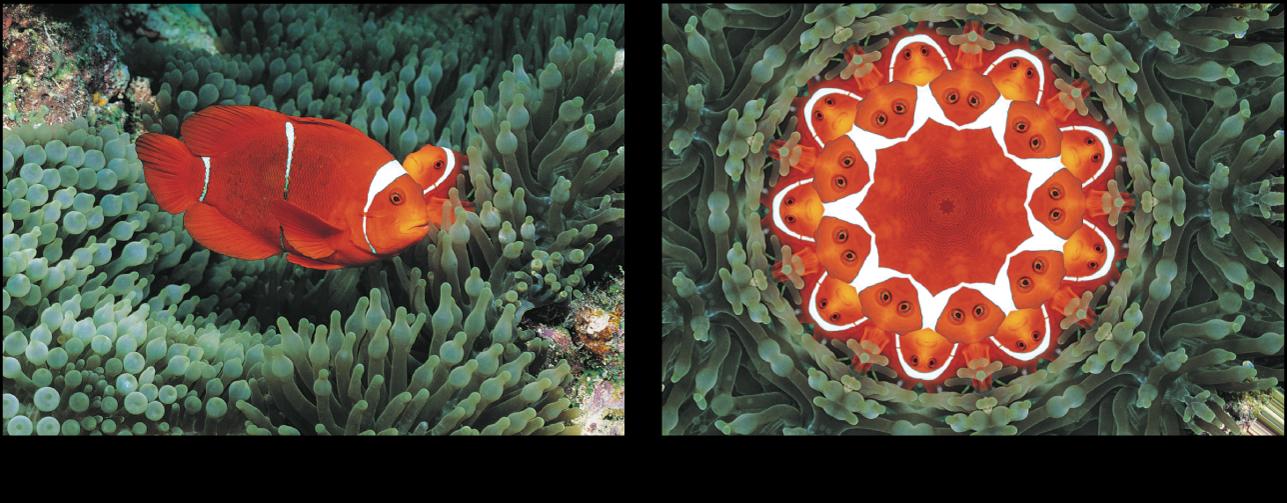 Canevas affichant l'effet du filtre Kaléidoscope