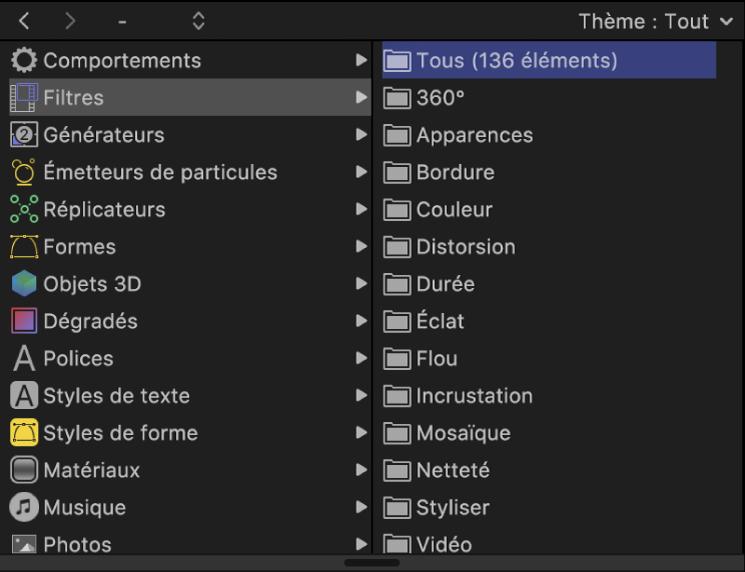 Catégories de filtres dans la bibliothèque
