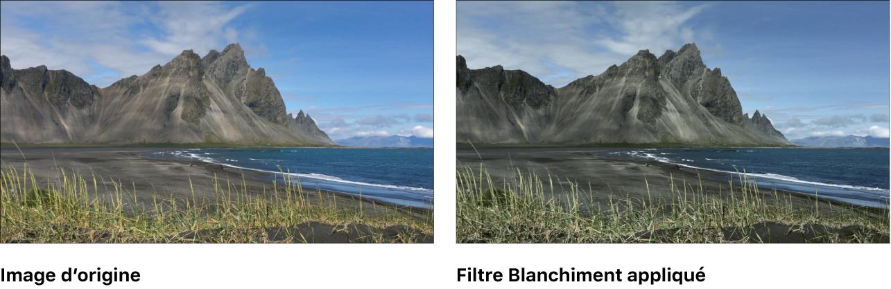 Canevas affichant l'effet du filtre Blanchiment