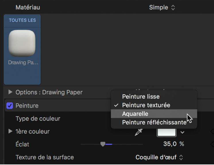 Inspecteur de texte3D affichant le menu local Peinture