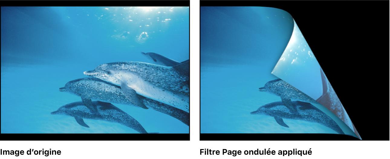 Canevas affichant l'effet du filtre Page ondulée